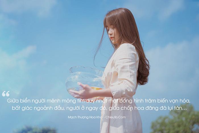 Quotes-ngon-tinh-tinh-cam